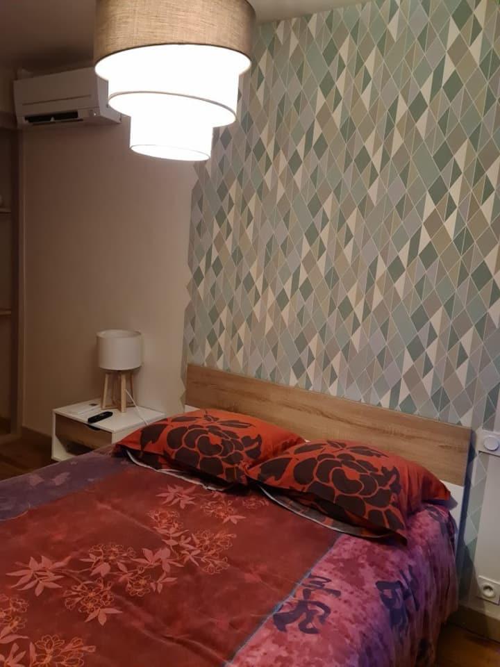 Spacieuse chambre meublée privée-20mnCNPE Bugey