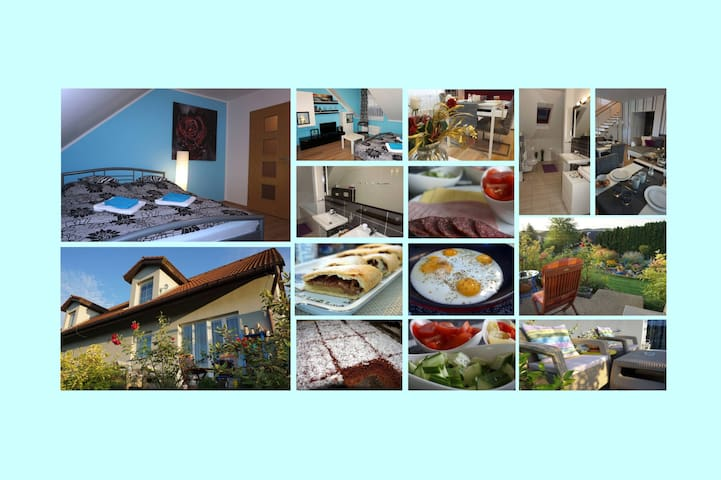 Bed&breakfast-Prague, near the airport/room N.1