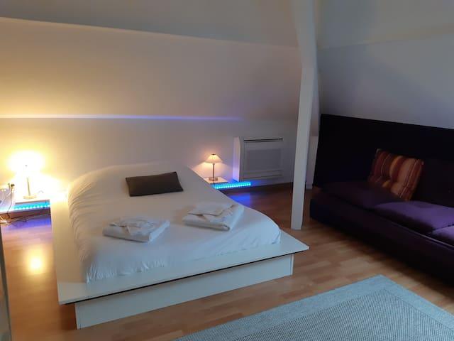 chambre  terre 1 lit 2 pers tv wifi climatisation salle de bain et wc privatifs