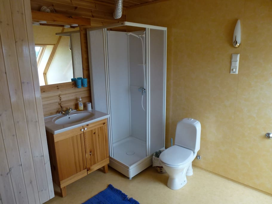 Large bathroom with sink, shower and toilet.