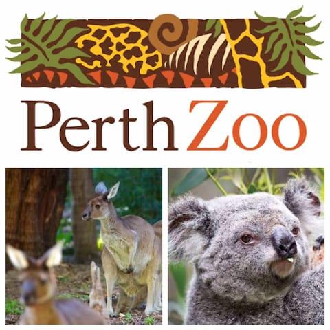 Perth Zoo (5-10 mins drive)