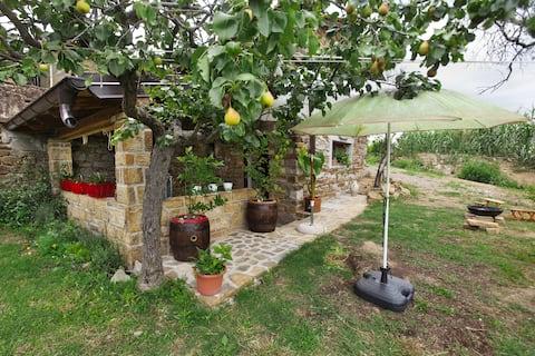 Green cottage Baredi, Izola, Slovenia