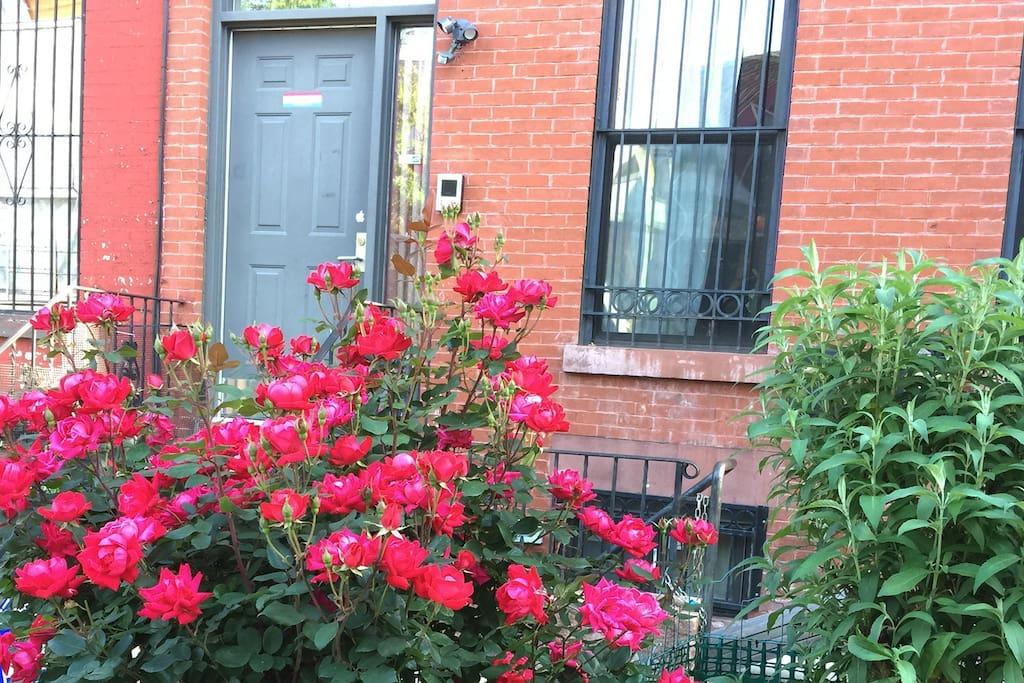 Modern apartment in a historic home maisons de ville - Bel appartement de ville brooklyn new york ...