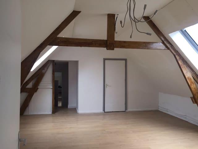 Charming House with Loft Apartment - Roosendaal - Lejlighed