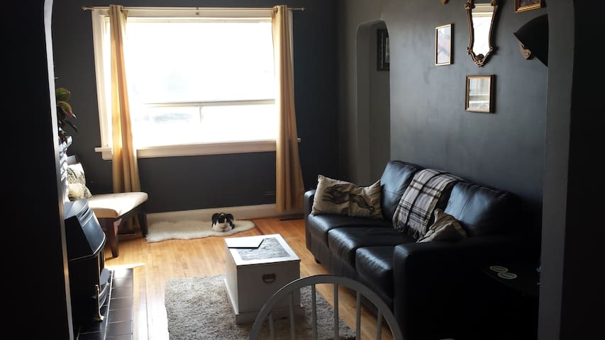 A Cute Room for Cat People - Toronto - Huis