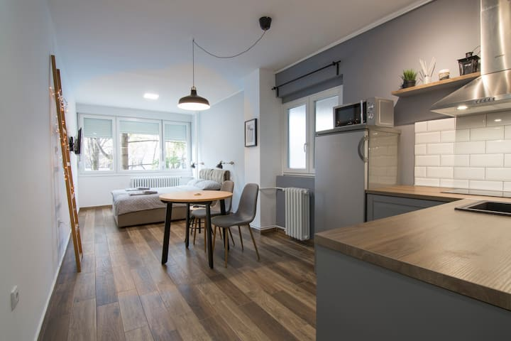 Sava studio apartment, New Belgrade