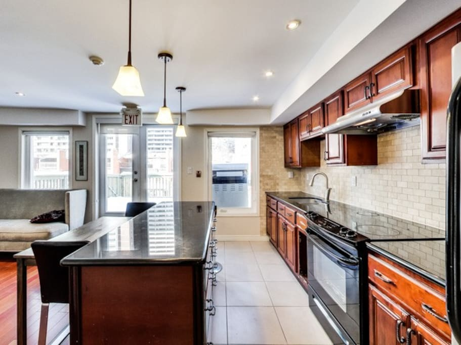 Large Bright 1 Bedroom Downtown Toronto Apartments For