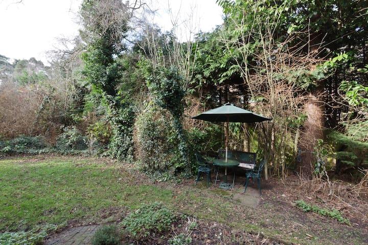 patio door view from breakfast room/lounge  garden furniture  for guests use side garden