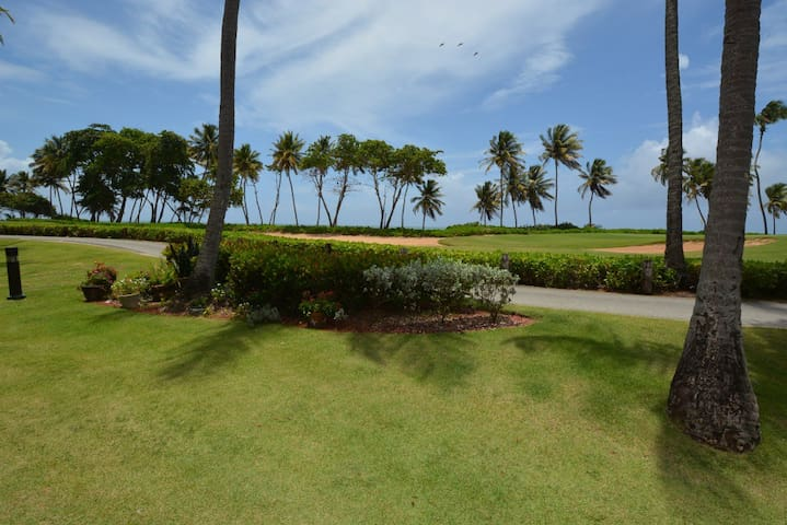 Affordable get away Beachfront condo BV215 - 烏馬考(Humacao) - 公寓