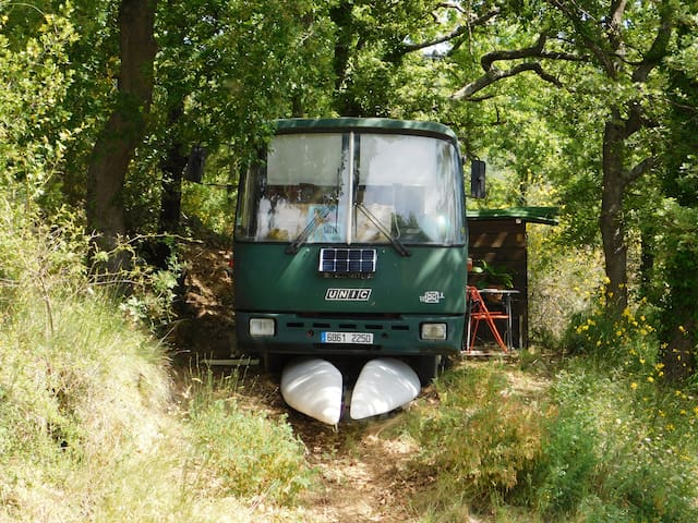 Un Bus en forêt de Chateaudouble (Into the wild)