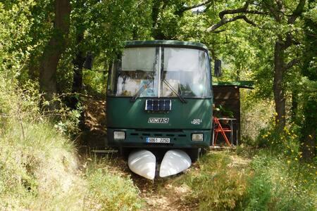 Un Bus en forêt de Chateaudouble (Into the wild)