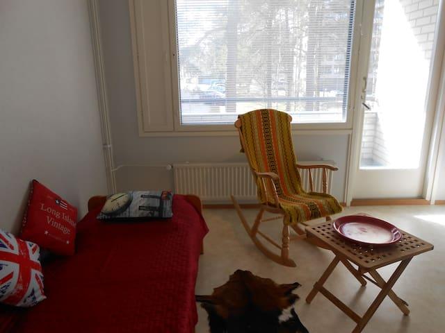 Hyvin rauhallinen  huone  Paimiossa - Paimio - Appartement