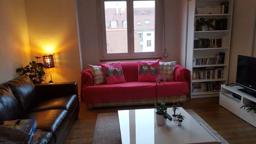 Duplex STRASBOURG WACKEN - Schiltigheim - Apartment