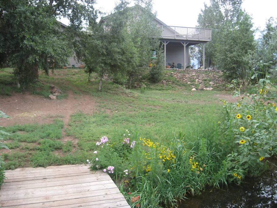 Back yard with creek