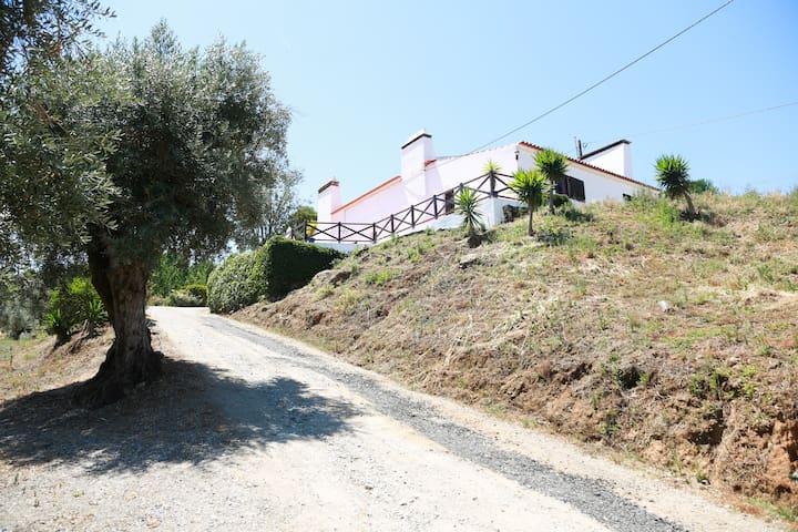 Monte tipico Alentejano, ideal para férias/festas - Montemor-o-Novo - Apartment
