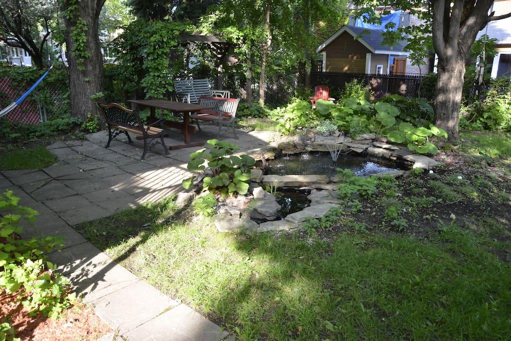 Cour arrière avec étang/Backyard with pond