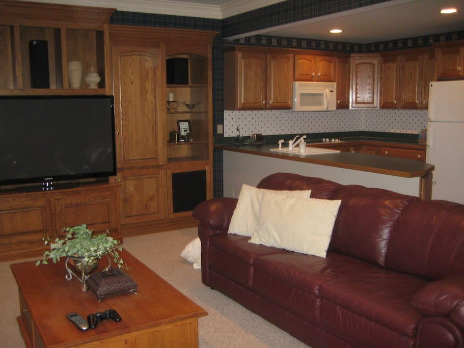 Kitchenette and large family room