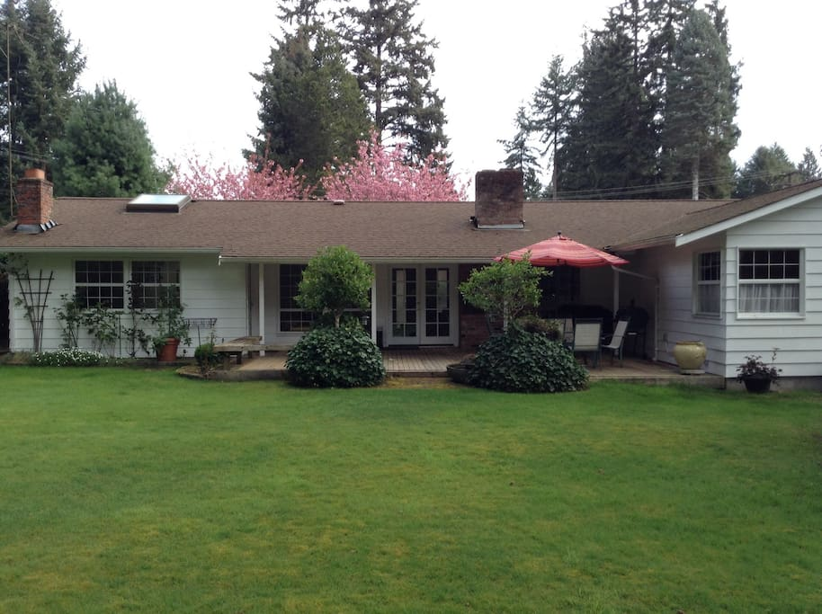 Charming Rambler Near Chambers Bay Houses For Rent In
