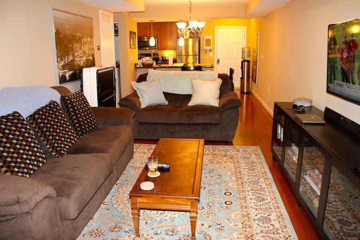 Cozy 1BD/1BR + Patio & Parking - Arlington - Condominium