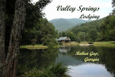 TreeTop Haven @ Valley Springs 1BR  - Rabun Gap - Cabin