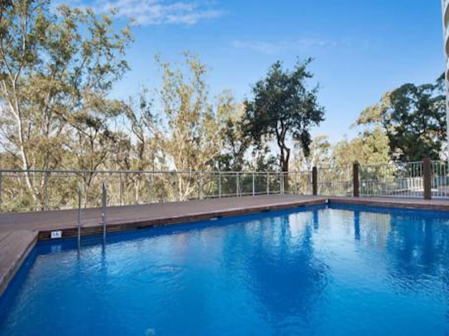 The pool with sunning area - which looks directly onto the bush.