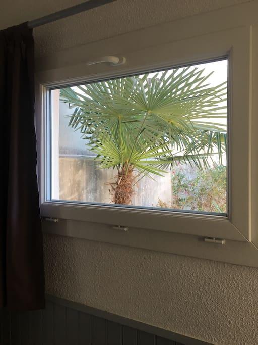 Fenêtre de La salle donnant sur une cour non accessible depuis l'appartement