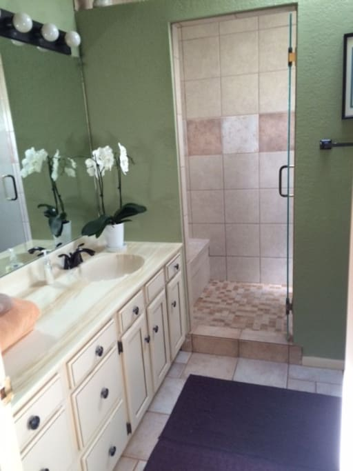 Private bath with large walk in rain shower