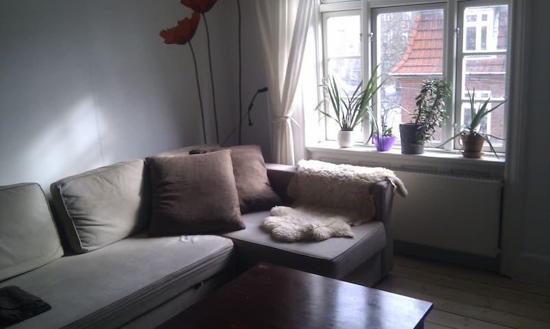 Cosy livingroom in bright apartment - Copenhagen - Apartemen