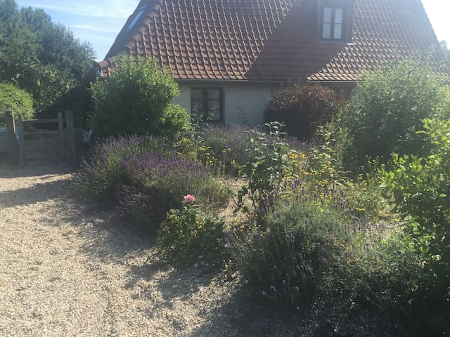 Renovated barn in Peaceful setting - Fressin - Hus