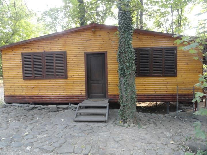 Романтична къщичка в парк Гривица
