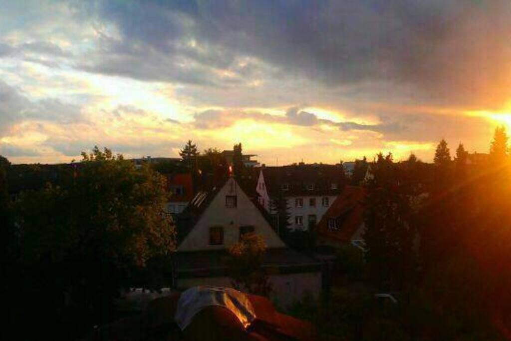 Blick aus dem Fenster / view from the window/ вид из окна
