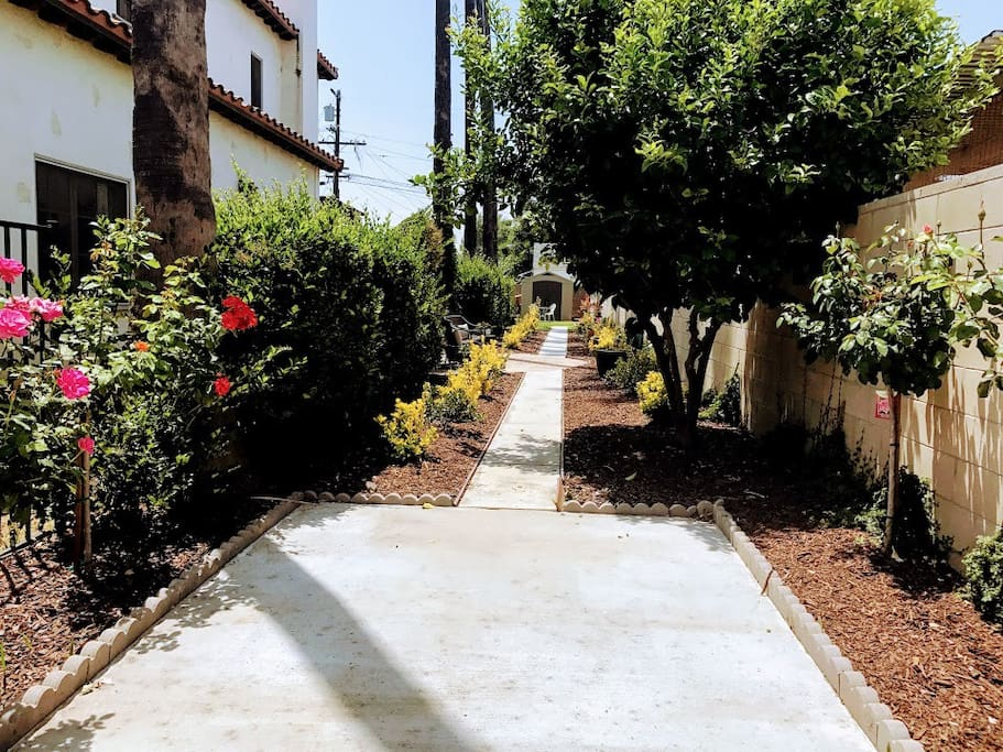 Take a stroll down the pathway.