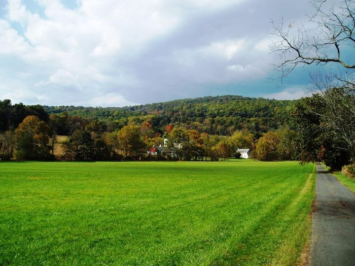PENBUCK FARM: BUCKS COUNTY 18th C. STONE HOME