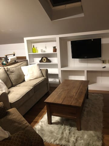 Living room with pull out full size sleeper, TV, and Firestick