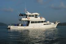 Dorado Fishing & Diving Boat