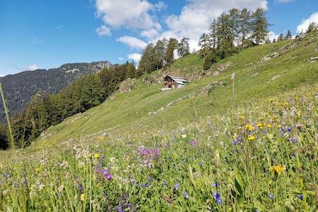 Alpji Hängula, alpines Paradies auf 1850m