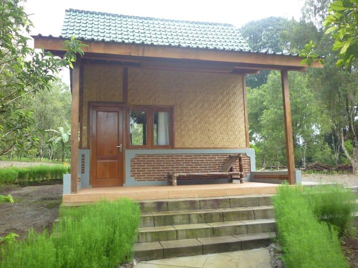 1911 Cottage & Villa (7)