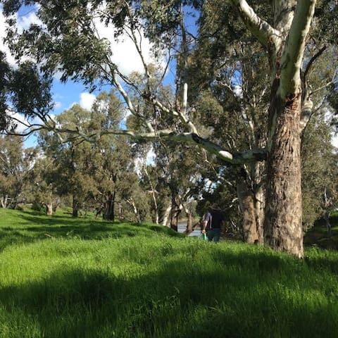 Surrounded by ancient river gums and bountiful nature yet less than 10 mins from Dubbo airport.