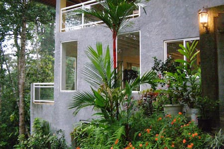 Treehouse In Cloud Forest of Panama - Paso Blanco