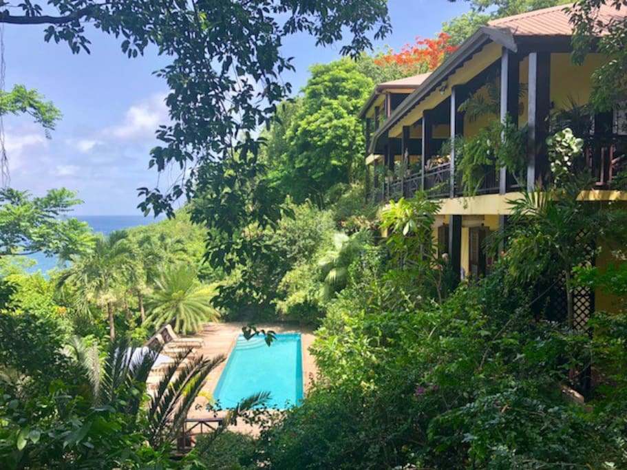 Views of the gardens, pool, villas and ocean from the tree deck.
