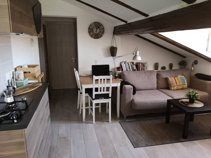 panoramic two-room attic