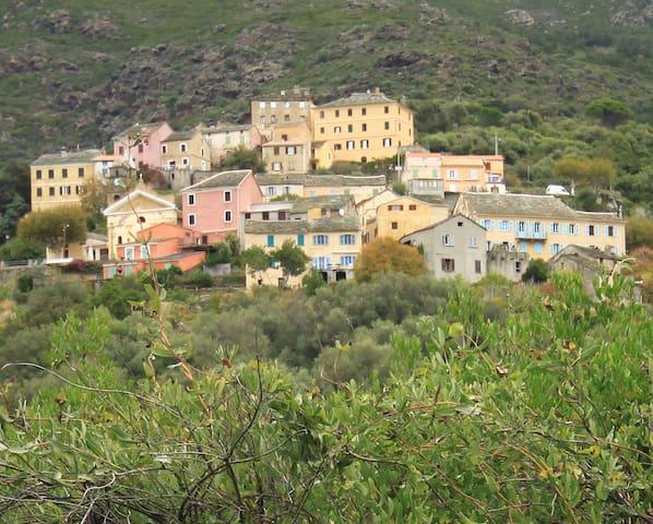 appartement dans maison de caractère à Ogliastro - Ogliastro - Flat