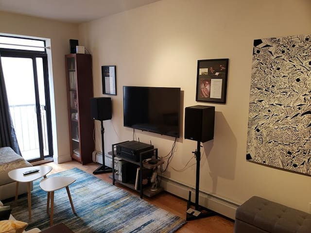 Large 1 bdrm free while musician owner is on tour