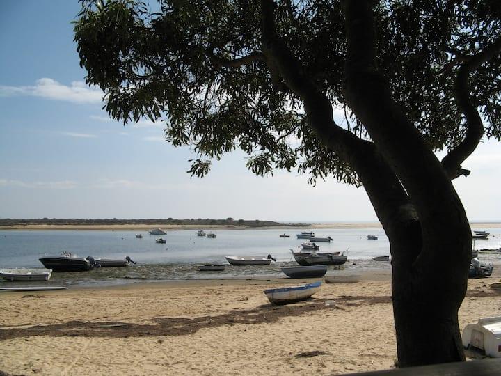 Beach Apartment in Quiet Location