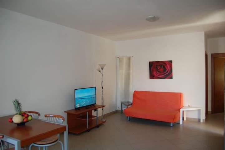 Appartamento con due camere per vacanze a Pineto
