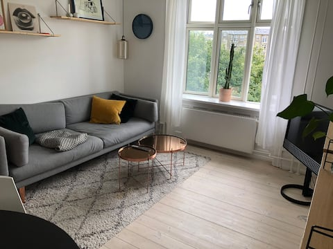Entire flat in central Copenhagen