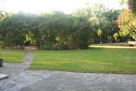 Splendida villa immersa nel verde - Longobardi Marina