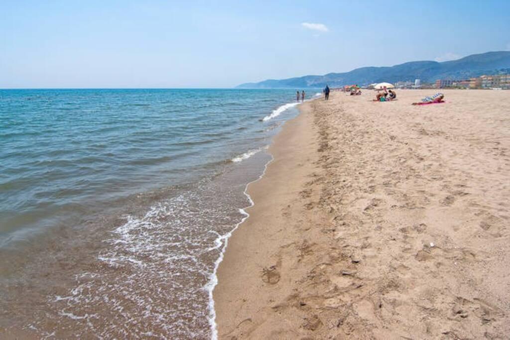 Paseos por la orila de la extensa playa