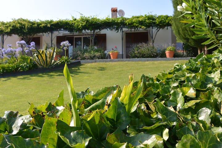 Casa da Margaretha, vakantiehuis - Nogueira do Cravo/OHP - Dům