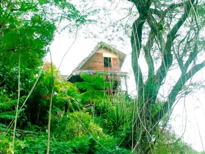 The Eagles Lair - Eco-lodge /Retreat  Vilcabamba